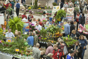 Green thumbs go LIVE this Saturday from Garden & Landscape Expo 2019