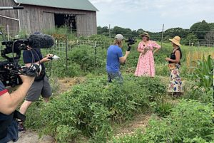 Around the Farm Table Blog: Endless Summer