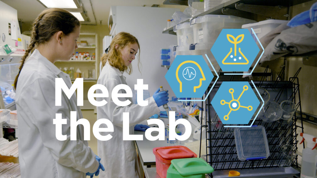 Meet the Lab