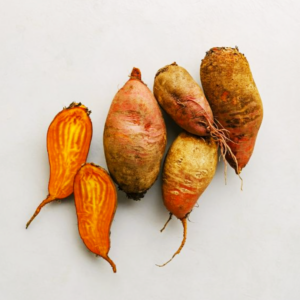 Beets that are orange in color laying on a white background