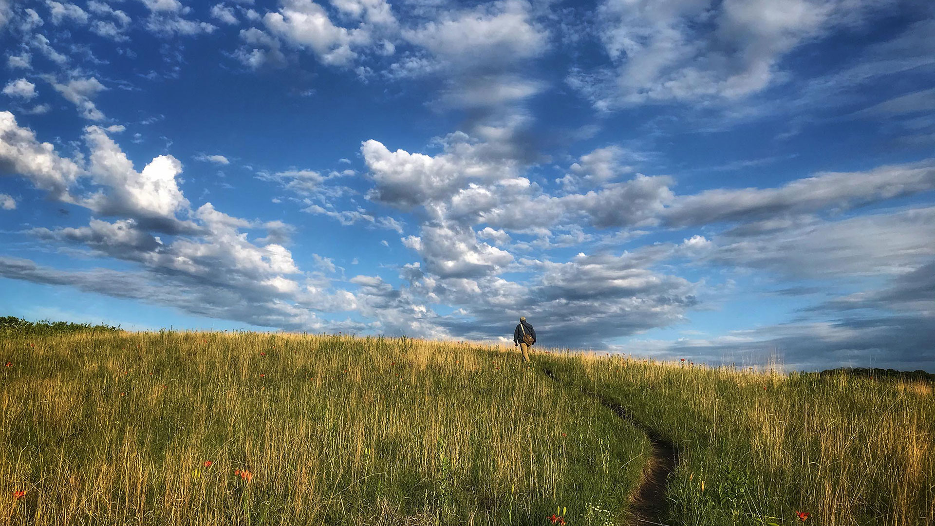A man walks along a path through a hilly field with a stark blue sky and clouds