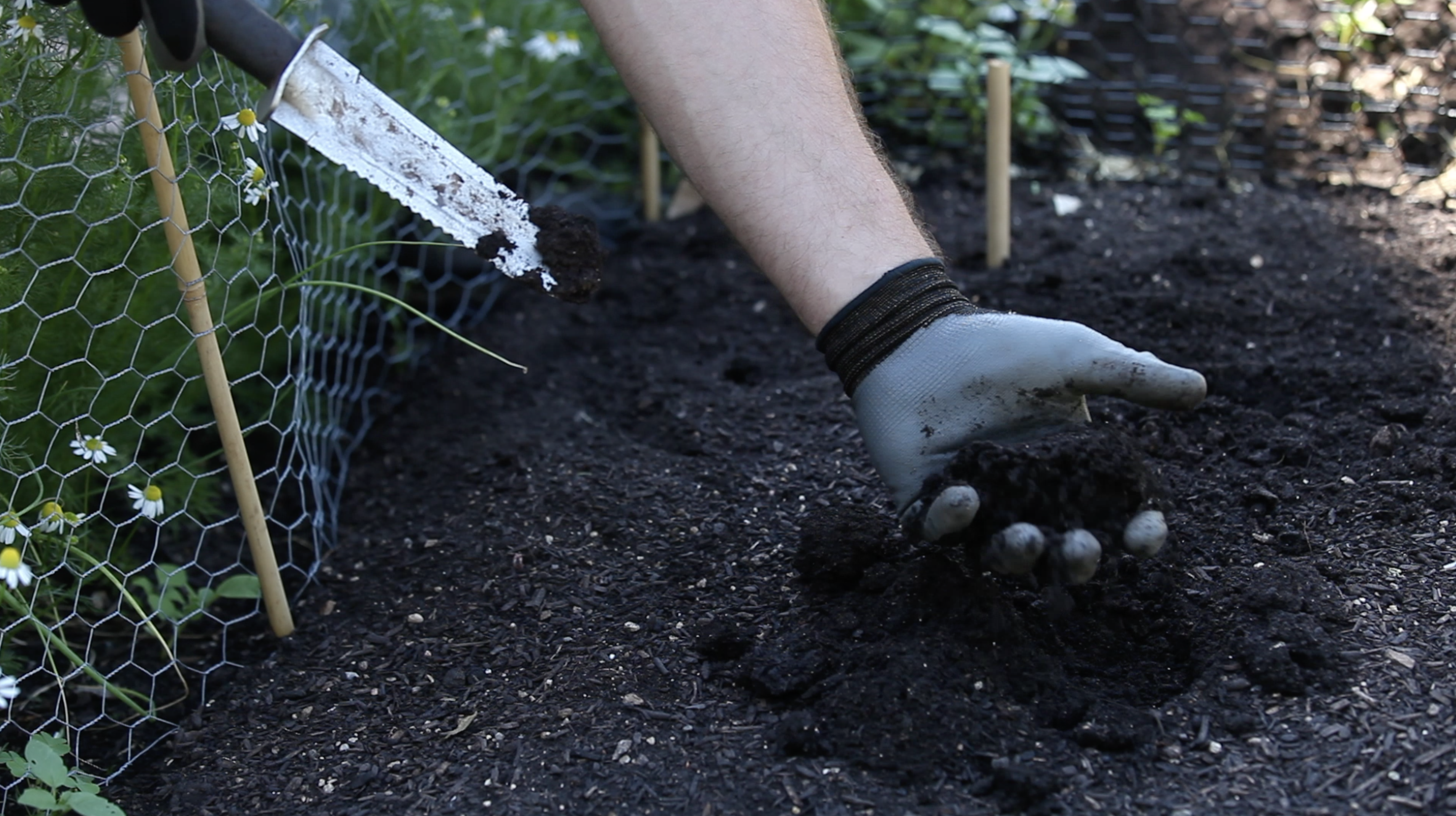 hand with glove holding soil scooped out from a garden bed