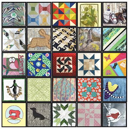 A quilt made of a diverse range of quilt blocks