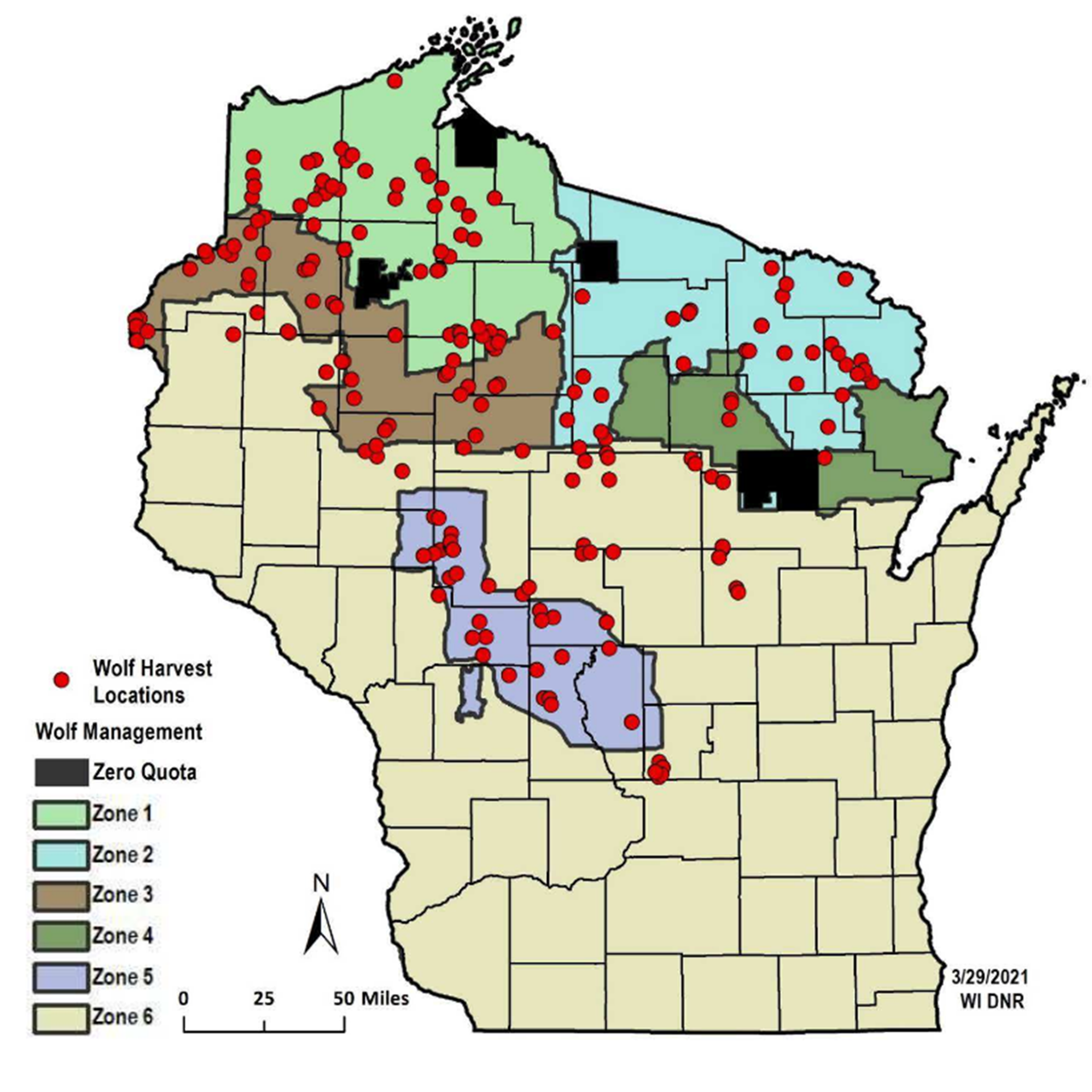A map of Wisconsin's wolf management zones showing the sites where wolves were killed during the February 2021 wolf hunt.
