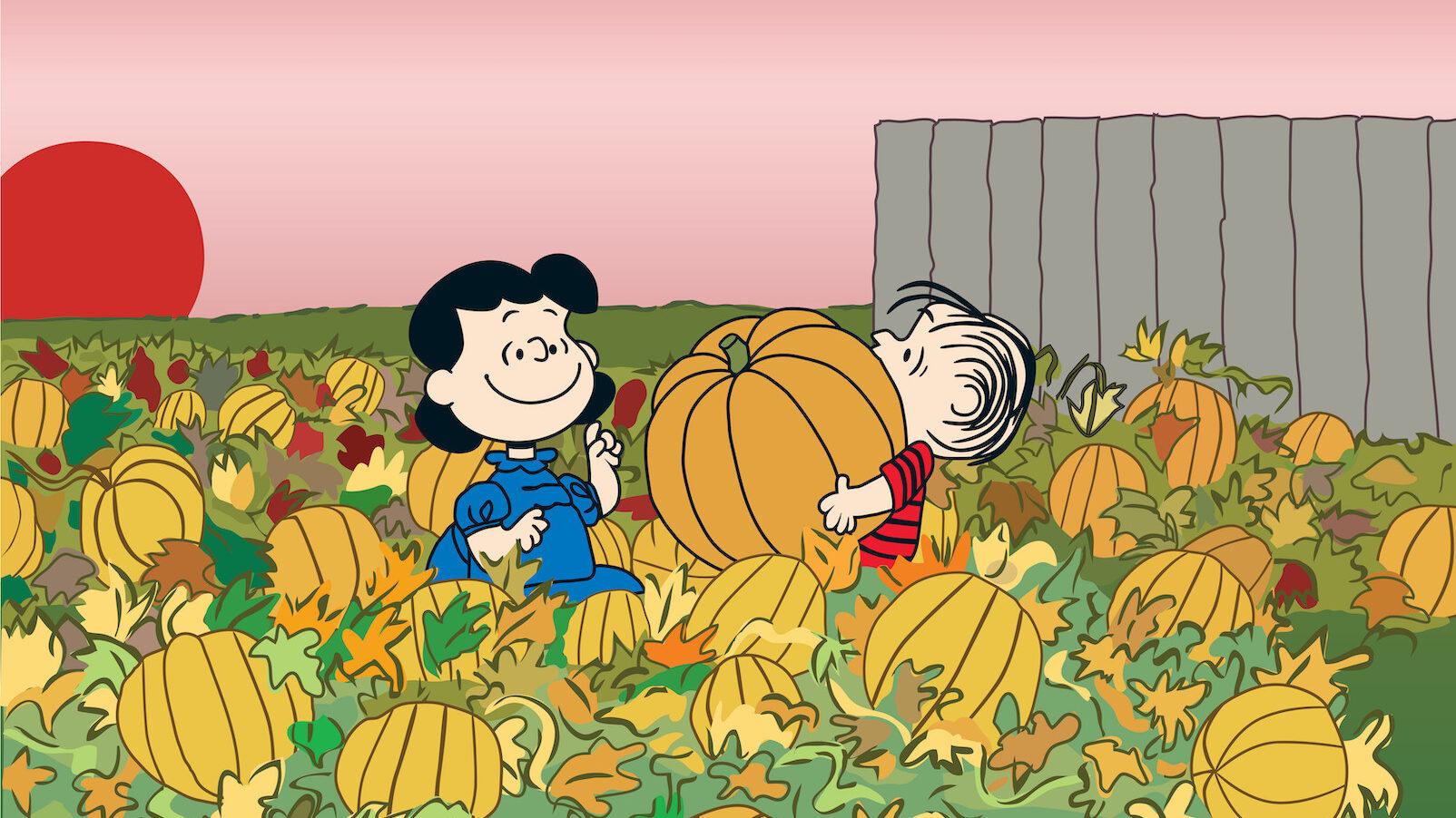 two kids in pumpkin patch